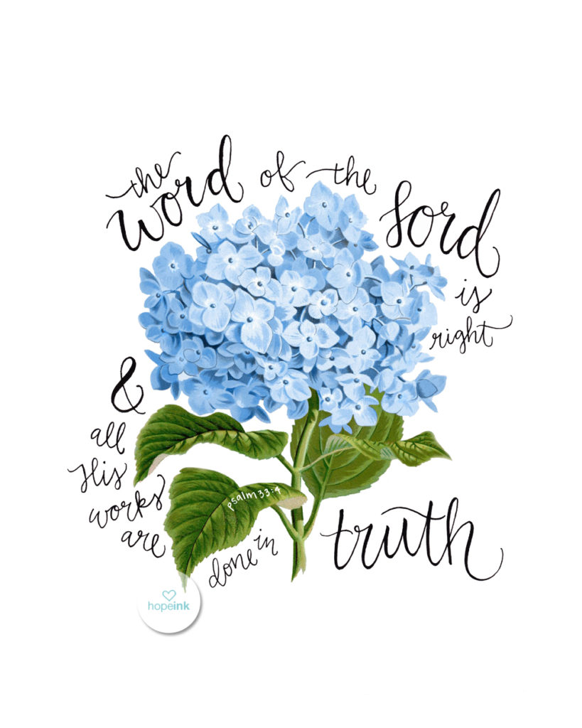 Scripture Art Hydrangeas Hope Ink